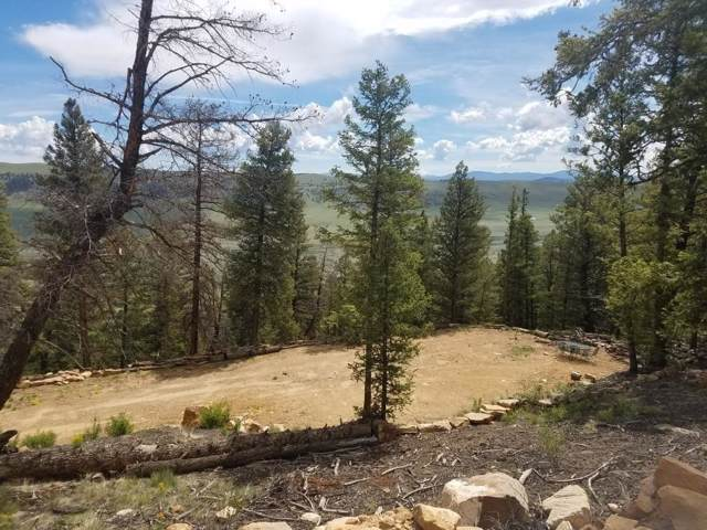 1228 Middle Fork Vista, Fairplay, CO 80440 (MLS #S1017018) :: eXp Realty LLC - Resort eXperts