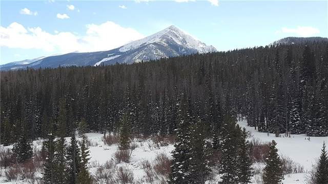 101 Cydney Lane B, Silverthorne, CO 80498 (MLS #S1017472) :: Colorado Real Estate Summit County, LLC