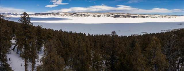 2580 Middle Fork Vista, Fairplay, CO 80440 (MLS #S1017872) :: Colorado Real Estate Summit County, LLC