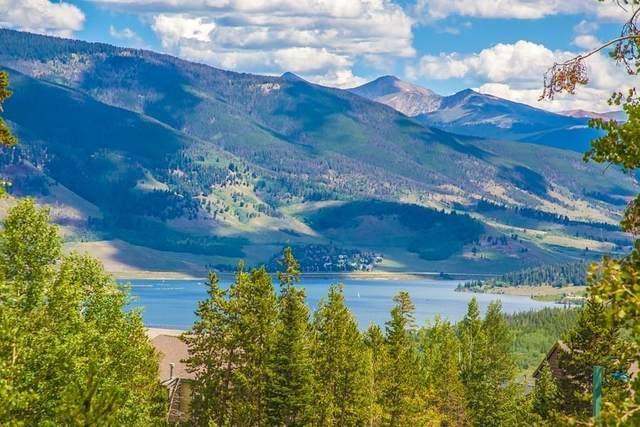 4400 Lodge Pole Circle H205, Silverthorne, CO 80498 (MLS #S1018038) :: Colorado Real Estate Summit County, LLC