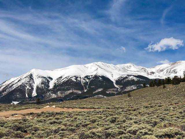 465 Mt Hope Drive, Twin Lakes, CO 81251 (MLS #S1018181) :: Dwell Summit Real Estate