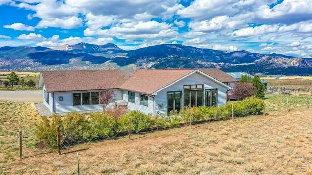 17402 Arabian Way, Buena Vista, CO 81211 (MLS #S1018257) :: Colorado Real Estate Summit County, LLC