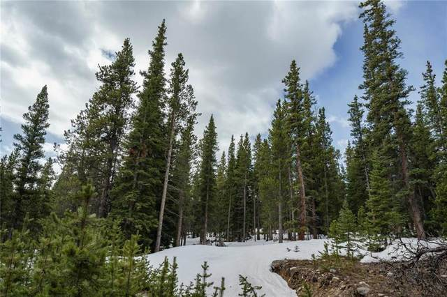 216 Gold Trail Cutoff, Fairplay, CO 80440 (MLS #S1018328) :: Dwell Summit Real Estate