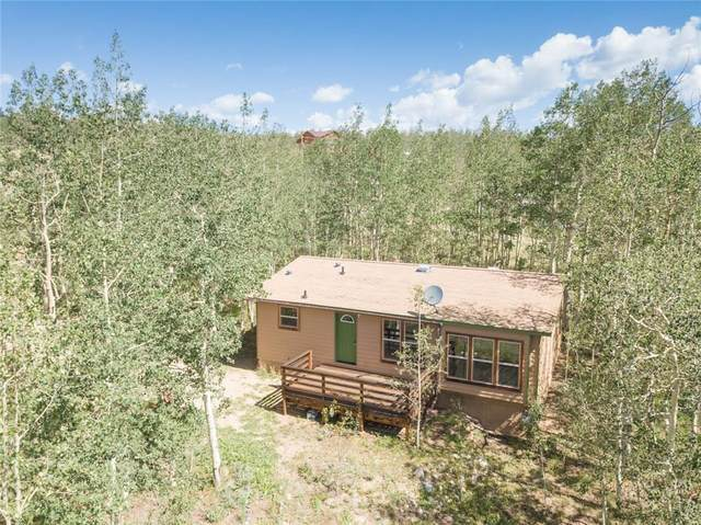 2346 High Creek Road, Fairplay, CO 80440 (MLS #S1018414) :: Colorado Real Estate Summit County, LLC