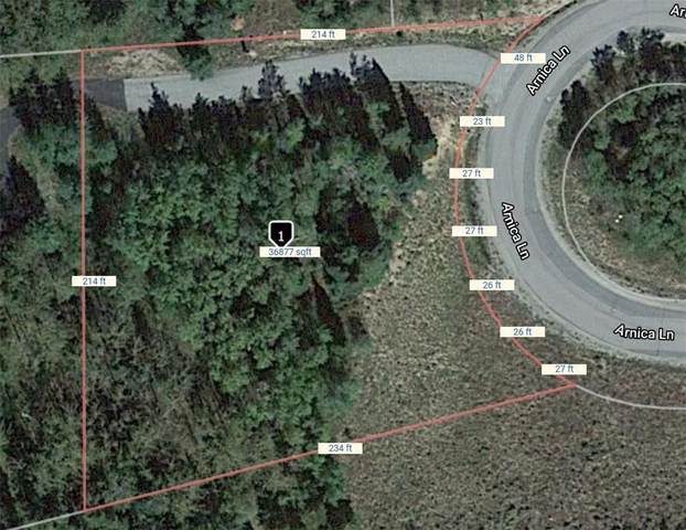 275 Arnica Lane, Silverthorne, CO 80498 (MLS #S1018423) :: eXp Realty LLC - Resort eXperts
