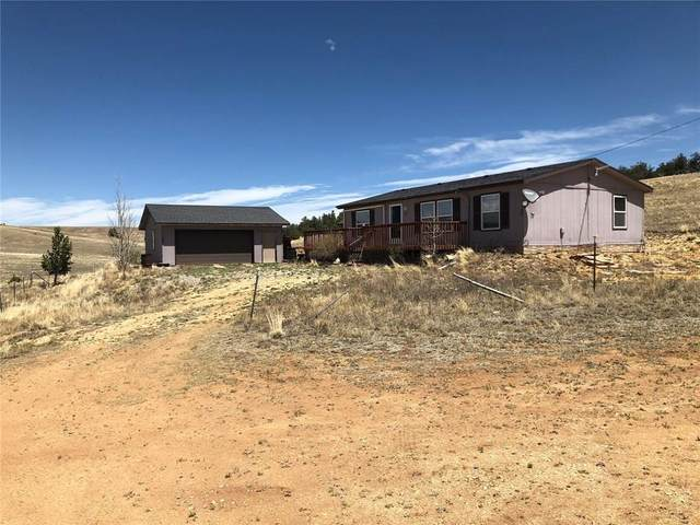 450 Cathy Drive, Hartsel, CO 80449 (MLS #S1018542) :: Dwell Summit Real Estate
