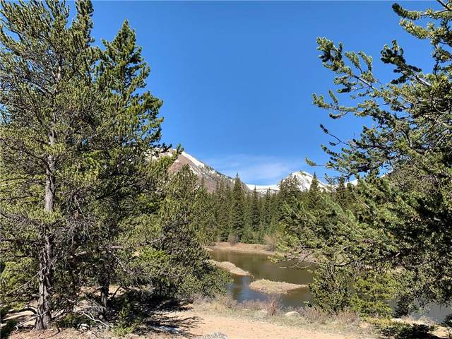 1141 Co Road 698, Alma, CO 80420 (MLS #S1018566) :: Colorado Real Estate Summit County, LLC