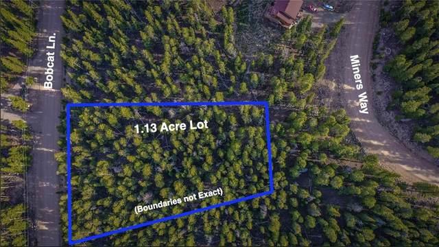 603 Bobcat Lane, Fairplay, CO 80440 (MLS #S1018626) :: eXp Realty LLC - Resort eXperts
