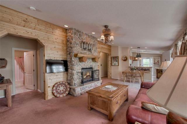 161 Parry Peak, Twin Lakes, CO 81251 (MLS #S1018930) :: Colorado Real Estate Summit County, LLC
