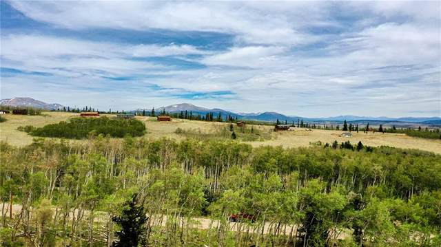00 High Creek Road, Fairplay, CO 80440 (MLS #S1019150) :: Colorado Real Estate Summit County, LLC
