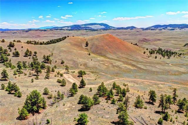 701 Eufaula Trail, Hartsel, CO 80449 (MLS #S1019302) :: eXp Realty LLC - Resort eXperts