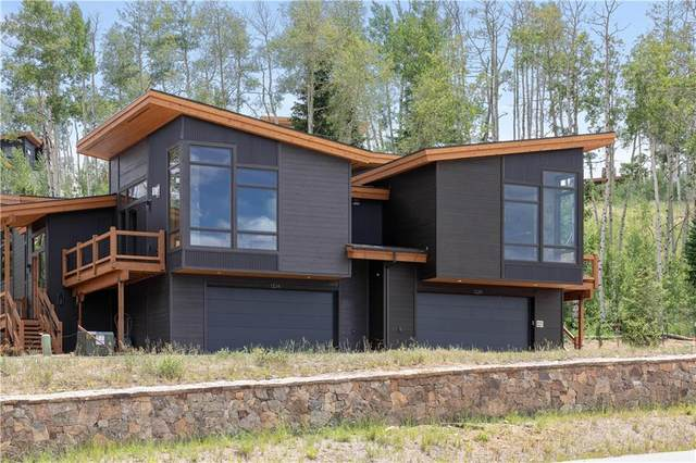 1324 W Baron Way, Silverthorne, CO 80498 (MLS #S1019355) :: Colorado Real Estate Summit County, LLC
