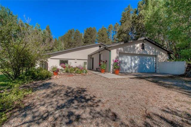 3128 Soda Springs, Leadville, CO 80461 (MLS #S1019441) :: Colorado Real Estate Summit County, LLC