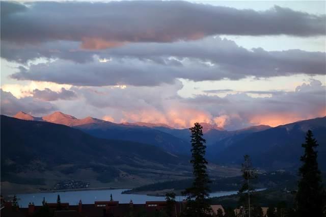 91400 Ryan Gulch Road #91426, Silverthorne, CO 80498 (MLS #S1020899) :: Colorado Real Estate Summit County, LLC