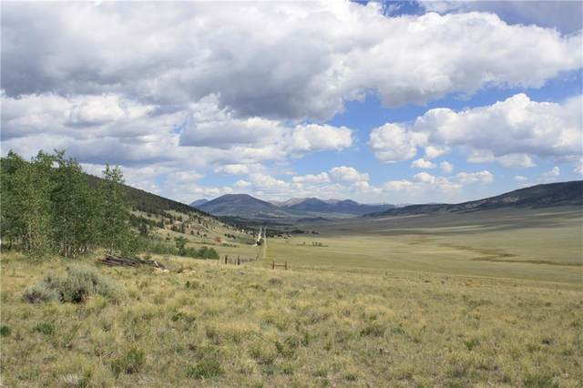 2952 Redhill Road, Fairplay, CO 80440 (MLS #S1020972) :: eXp Realty LLC - Resort eXperts