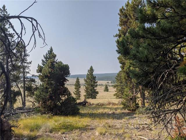 51 Potentilla Road, Alma, CO 80420 (MLS #S1021091) :: Dwell Summit Real Estate