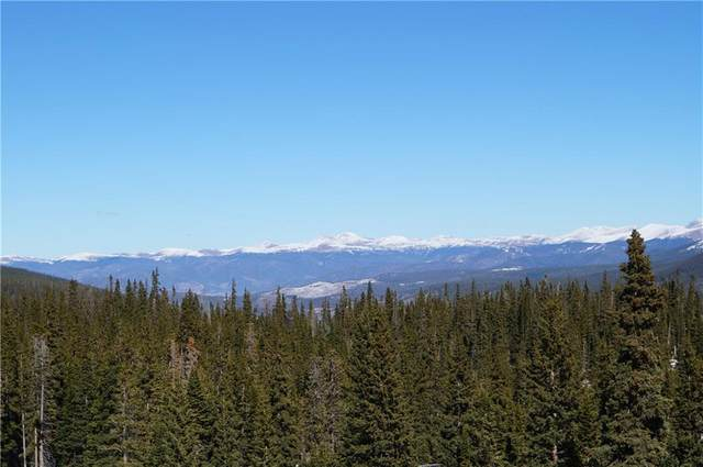 36 Robertson Lane, Breckenridge, CO 80424 (MLS #S1022974) :: Colorado Real Estate Summit County, LLC