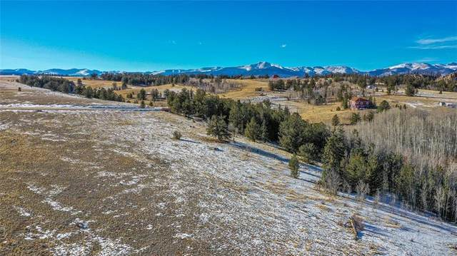 839 Arland Road, Como, CO 80432 (MLS #S1023123) :: Dwell Summit Real Estate