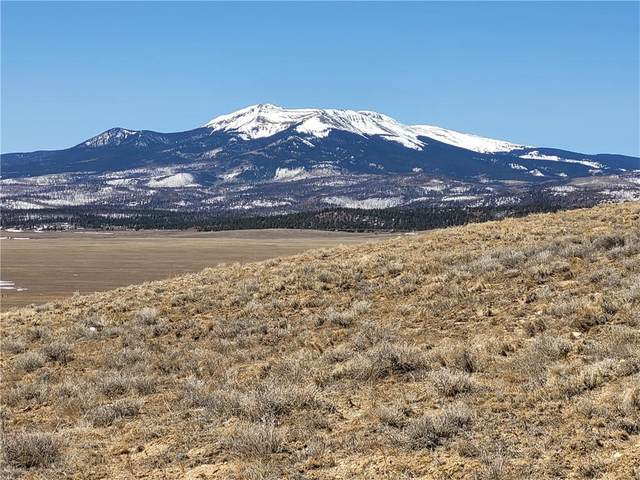 TBD Bare Trail, Fairplay, CO 80449 (MLS #S1023418) :: Dwell Summit Real Estate
