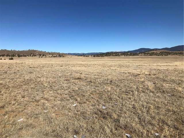 2558 Larimer Drive, Hartsel, CO 80449 (MLS #S1023560) :: eXp Realty LLC - Resort eXperts