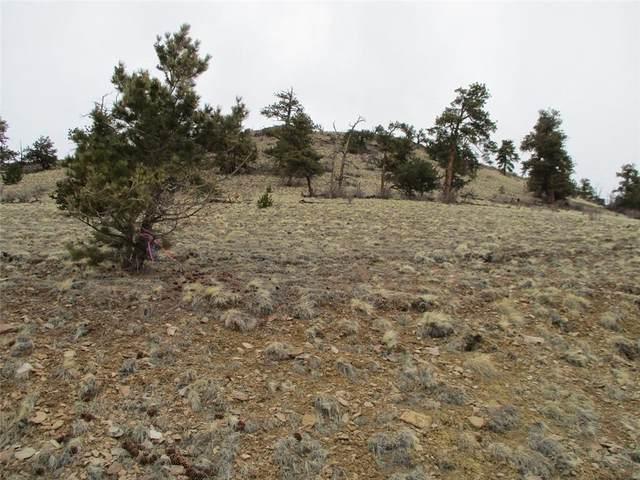 901 Elkhorn View Drive, Como, CO 80432 (MLS #S1024103) :: Colorado Real Estate Summit County, LLC