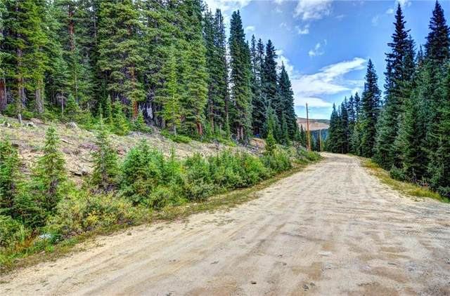 00 Bum Drive, Fairplay, CO 80440 (MLS #S1024579) :: eXp Realty LLC - Resort eXperts