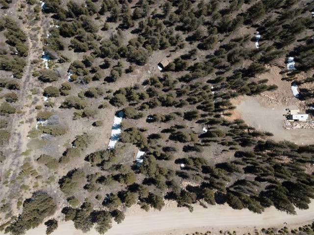 TBD Middle Fork, Fairplay, CO 80440 (MLS #S1024754) :: Colorado Real Estate Summit County, LLC