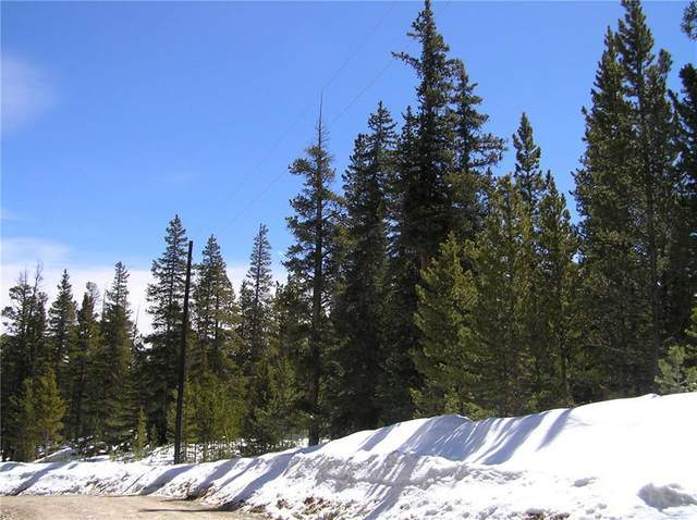 TBD Co Rd 14 A, Fairplay, CO 80440 (MLS #S1024876) :: eXp Realty LLC - Resort eXperts