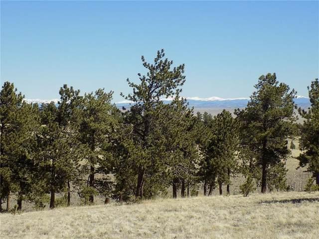 10617 Ranch Road, Hartsel, CO 80449 (MLS #S1025938) :: Colorado Real Estate Summit County, LLC