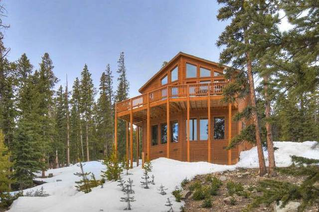 290 Puma Place, Fairplay, CO 80440 (MLS #S1026083) :: eXp Realty LLC - Resort eXperts
