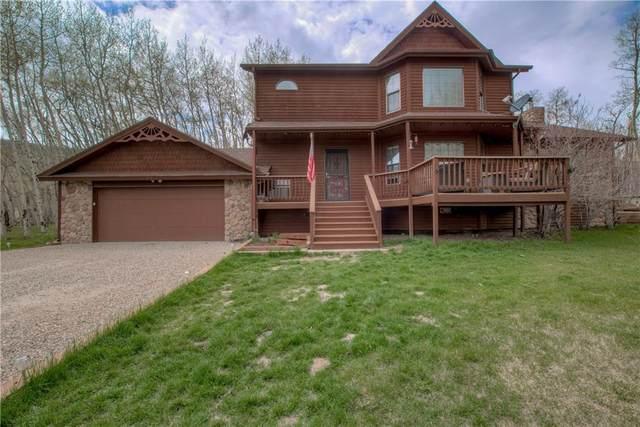 197 Warm Springs, Fairplay, CO 80440 (MLS #S1027319) :: Colorado Real Estate Summit County, LLC