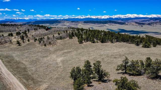 717 Reinecker Court, Fairplay, CO 80432 (MLS #S1027322) :: eXp Realty LLC - Resort eXperts