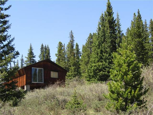 156 Silk Sisters Place, Fairplay, CO 80440 (MLS #S1027497) :: Dwell Summit Real Estate