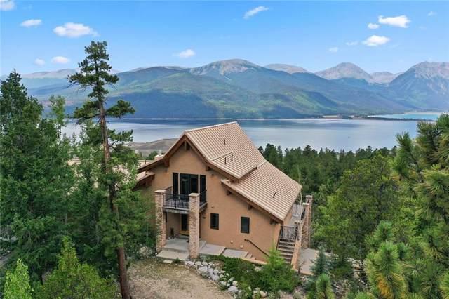 48 La Plata Peak Drive, Twin Lakes, CO 81251 (MLS #S1030874) :: Colorado Real Estate Summit County, LLC