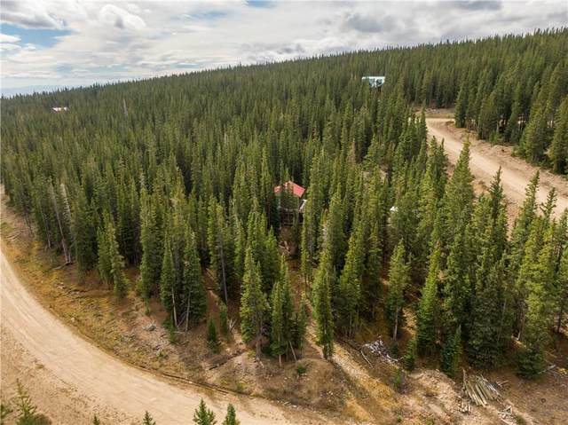 899 Prunes Place, Fairplay, CO 80440 (MLS #S1031338) :: Colorado Real Estate Summit County, LLC