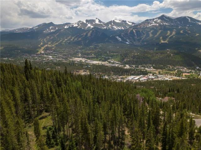 19 Bearing Tree Road, Breckenridge, CO 80424 (MLS #S388629) :: Resort Real Estate Experts