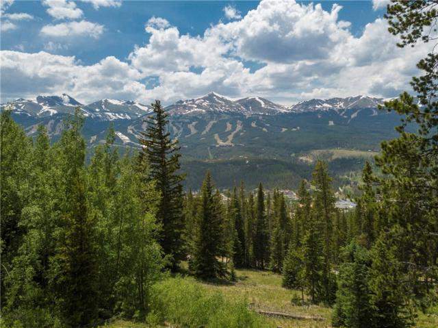 20 Bearing Tree Road, Breckenridge, CO 80424 (MLS #S388630) :: Resort Real Estate Experts