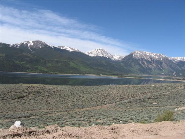294 Mt. Hope Drive, Twin Lakes, CO 81251 (MLS #S394682) :: Resort Real Estate Experts