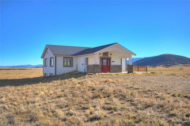 124 Wooly Worm Lane, Fairplay, CO 80440 (MLS #S1004396) :: Resort Real Estate Experts
