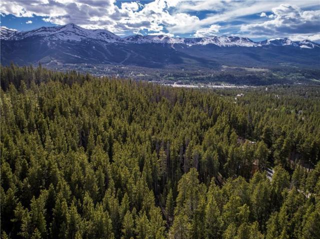 66 Apex Circle, Breckenridge, CO 80424 (MLS #S1005103) :: Colorado Real Estate Summit County, LLC