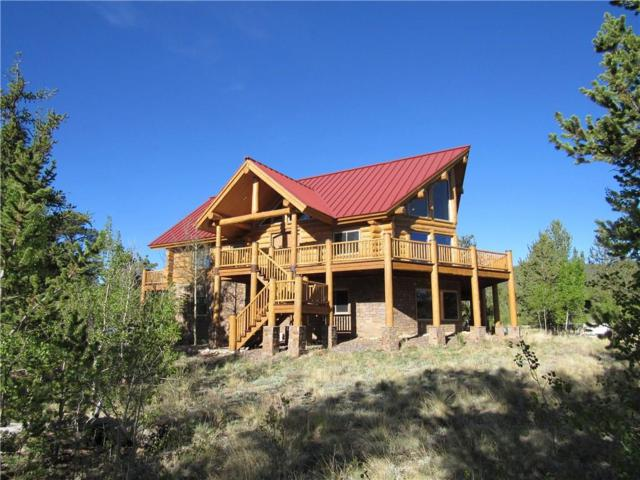 199 S Browns Pass Road, Fairplay, CO 80440 (MLS #S1006031) :: Resort Real Estate Experts