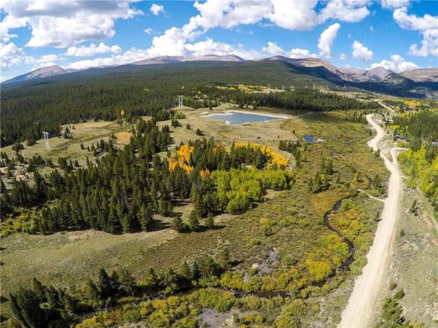 TBD Mosquito Pass Road, Alma, CO 80420 (MLS #S1006450) :: Resort Real Estate Experts