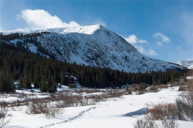 106 Mcdill Road, Breckenridge, CO 80424 (MLS #S1006528) :: Colorado Real Estate Summit County, LLC
