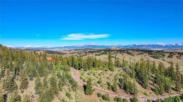 1390 Stagestop Road, Jefferson, CO 80456 (MLS #S1008373) :: Colorado Real Estate Summit County, LLC
