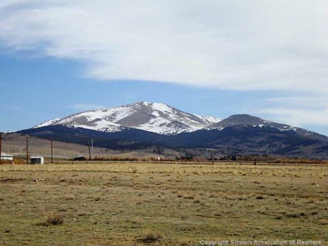 0 6th Street, Pcr 3 Street, Fairplay, CO 80440 (MLS #S1008641) :: Colorado Real Estate Summit County, LLC