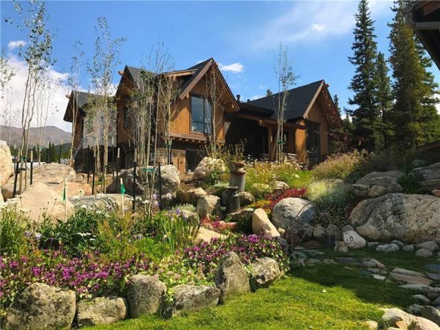 378 River Park Drive, Breckenridge, CO 80424 (MLS #S1008731) :: Resort Real Estate Experts