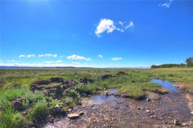 Lot 13 Cty Road 18 Road, Fairplay, CO 80440 (MLS #S1008755) :: Colorado Real Estate Summit County, LLC