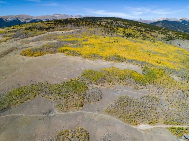 1215 Breakneck Pass Court, Fairplay, CO 80440 (MLS #S1008950) :: Colorado Real Estate Summit County, LLC
