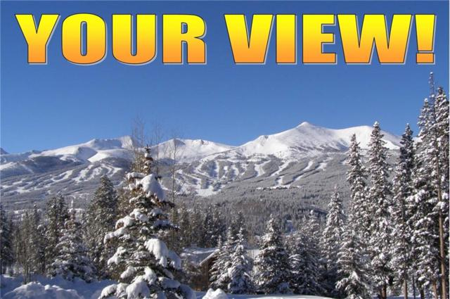 40 Rounds Road, Breckenridge, CO 80424 (MLS #S1009848) :: Resort Real Estate Experts