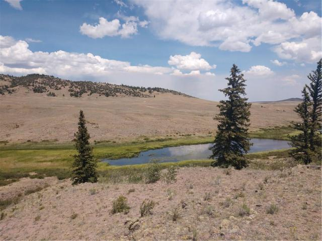 237 Mcmurry Road, Hartsel, CO 80449 (MLS #S1009968) :: Resort Real Estate Experts
